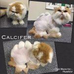Calcifer-Dino-Cut-web.jpg